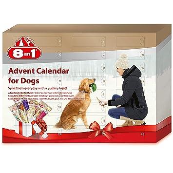 Weihnachtskalender Für Hunde.8in1 Adventskalender Für Hunde Das Geschenk Mit Extra Kauspaß