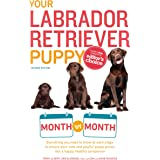 Your Labrador Retriever Puppy Month by Month, 2nd Edition: Everything You Need to Know at Each Stage of Development (Your Pup