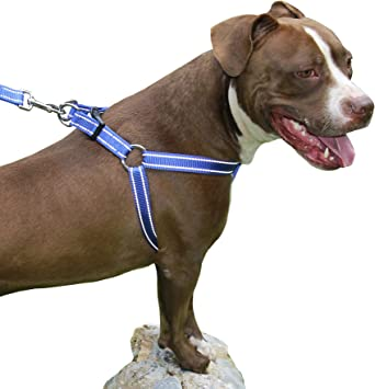 CHILIPET - Chaleco de arnés para Perro con Costuras Reflectantes ...