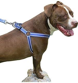 VORCOOL - Arnés de Poliuretano para Bulldog Pitbull Terrier (Negro ...