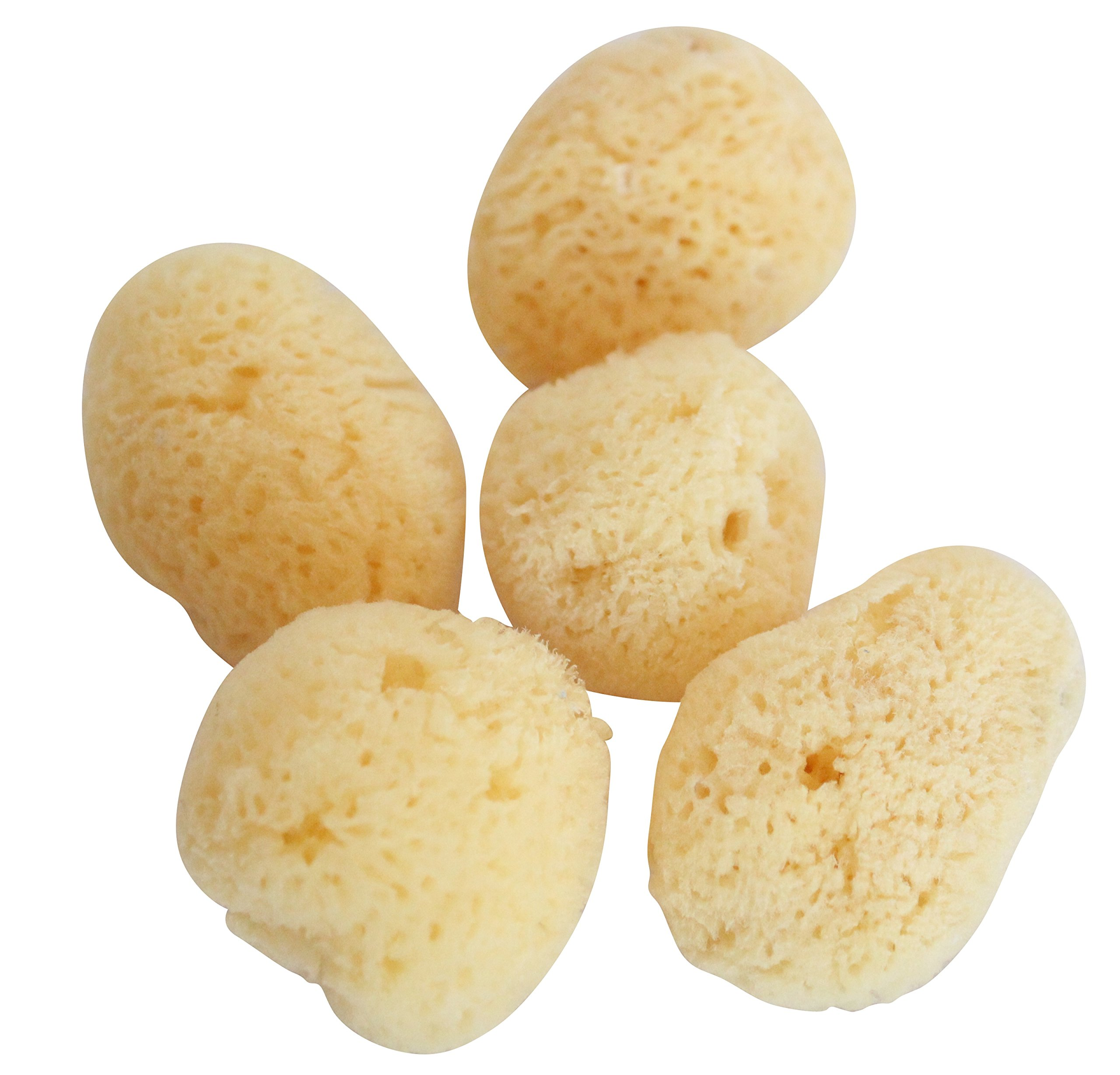 Sea Sponge Natural Body Scrub Make Up Remover Bathing Painting 5-Piece