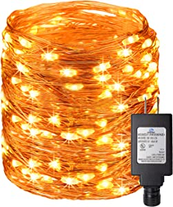 Ehome Fairy Lights, LED String Lights Copper Wire Decorative Lights 100 LEDs for Wedding, Bedroom, Patio, Christmas UL588 Approved (33FT)