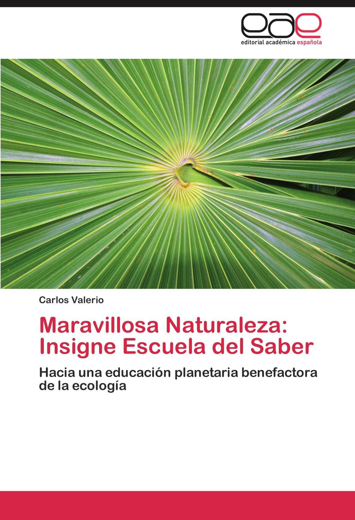 Maravillosa Naturaleza: Insigne Escuela del Saber: Amazon.es: Valerio, Carlos: Libros