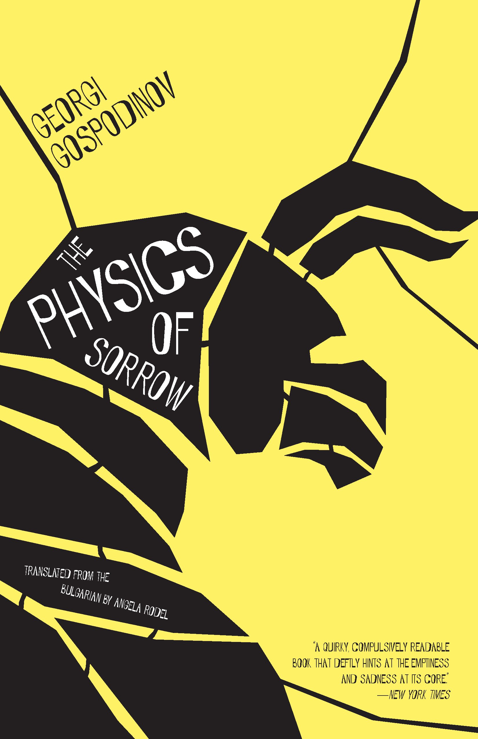 Download The Physics of Sorrow ebook