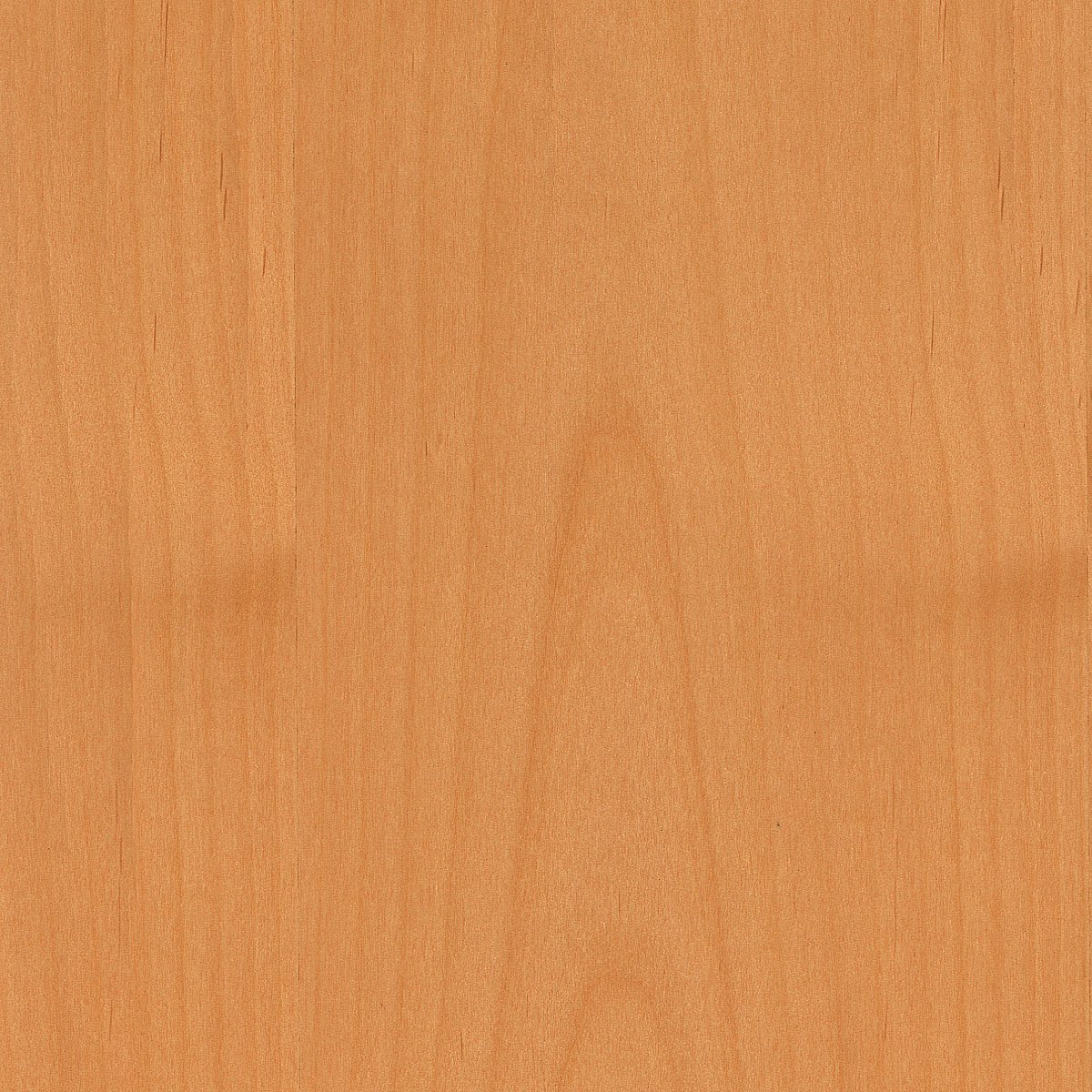 Alder, Clear, Various Cut, 48X96 10 mil (Paperback) Wood Veneer Sheet by Wood-All