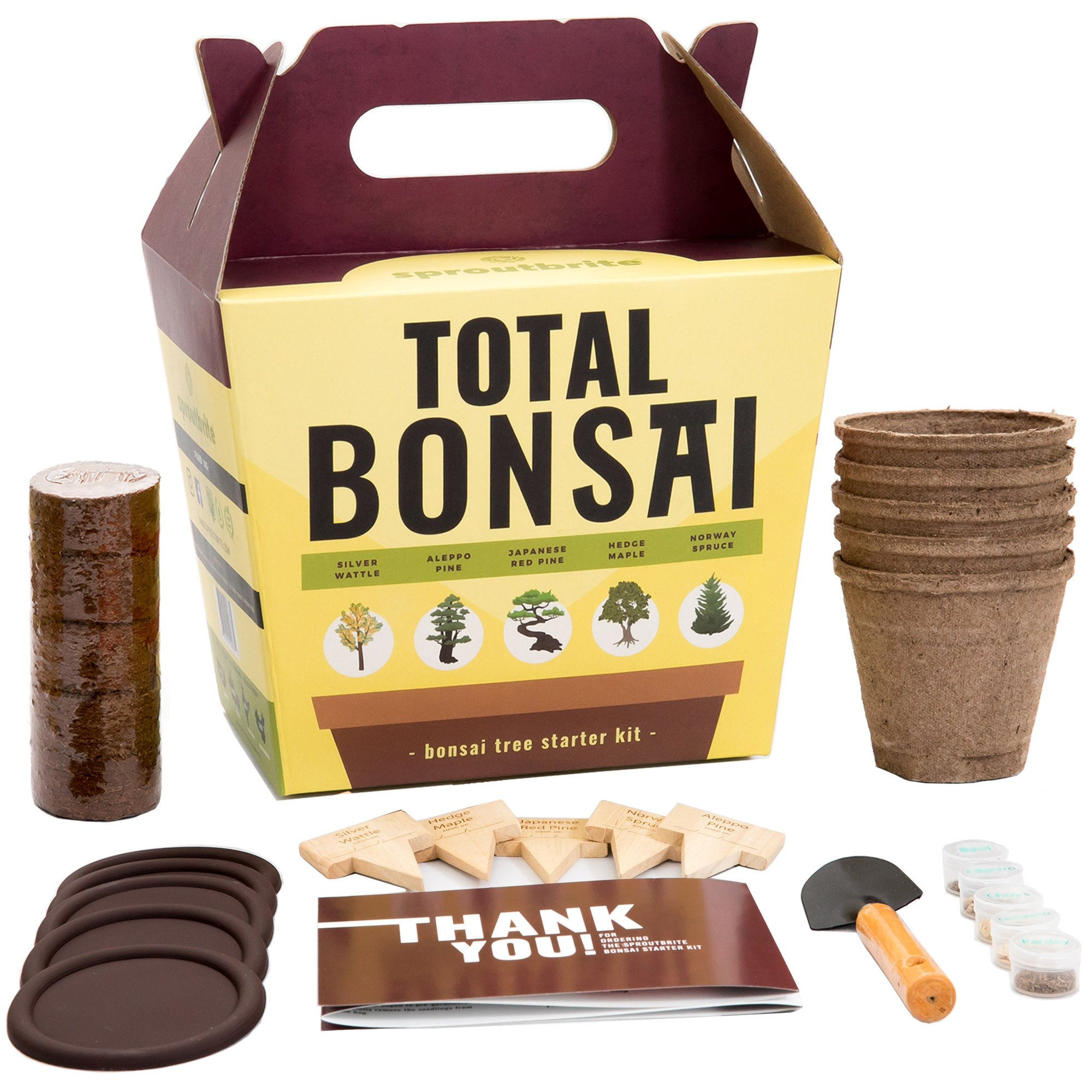 Sproutbrite Bonsai Tree Seed Starter Kit for Beginners - 5 of The Easiest Tree Types to Start Indoors - Complete Mini Bonsai Plant Growing kit - a Unique Gardening Gift by Sproutbrite