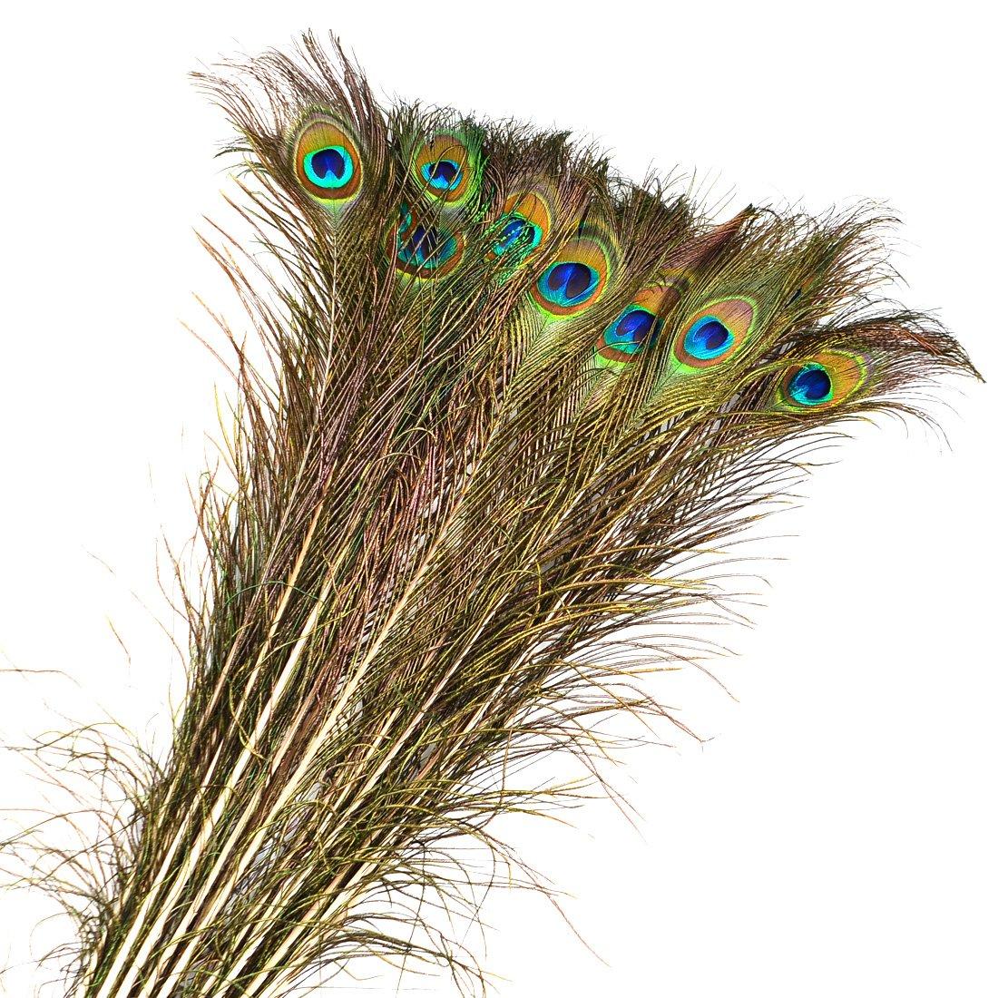 Genuino Piuma, FOKOM 20 Pack 90CM Piume di Pavone Natural Peacock Feather