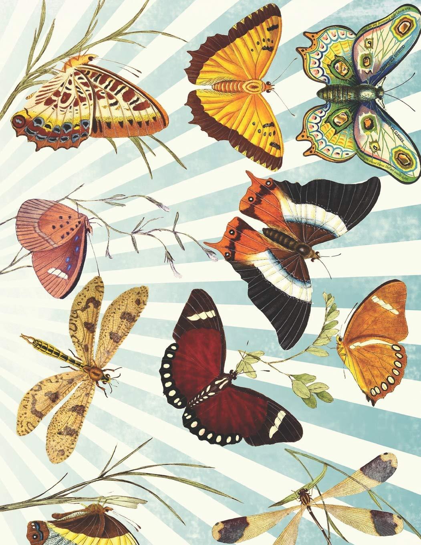 Ukulele Tabs Blank Notebook: Vintage Butterly Butterflies