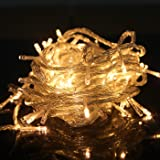HDE Linkable LED String Lights Holiday Home Fairy Multifunction Wedding College Dorm Room Craft Decoration Expandable Rope Lights (100 Micro LEDS - Warm White)