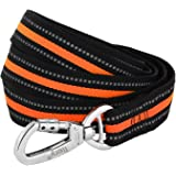 Dog Leash, Itery Reflective Dog Leash Pet Safety Walking and Trainning Leash 6 Feet Length 1 Inch Width
