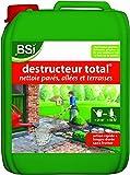 BSI Destructeur Total Anti-Dépôt Vert, 5L