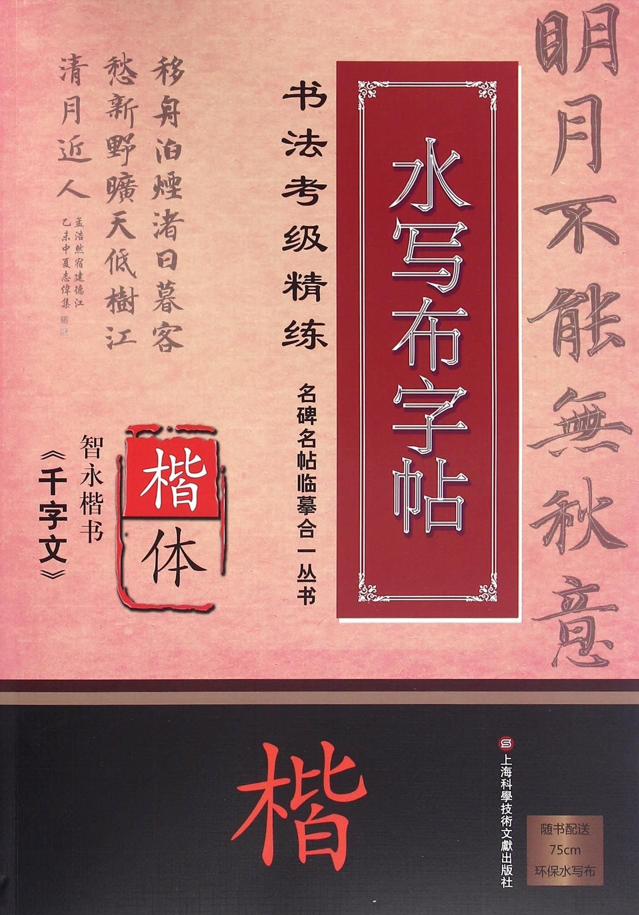 Zhi Yong's Thousand Character Classic in Regular Script (Water Cloth Copybook for Regular Script Calligraphy Level Exam Training) / Famous Stele Inscription Tracing Series (Chinese Edition) ebook