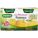 Blédina Mon Premier Petit Pot Pommes dès 4/6 mois 2 x 130 g - Lot de 6