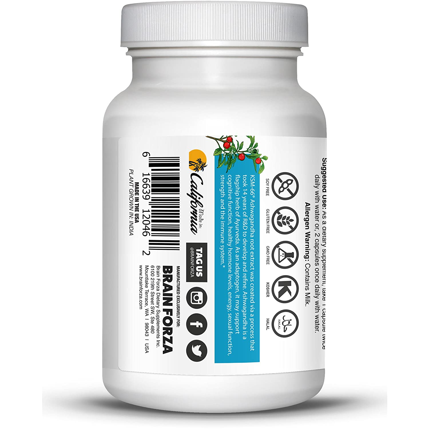 Brain Forza Organic KSM-66 Ashwagandha Root Extract 1,000mg/day for Brain,  Stress, Memory and
