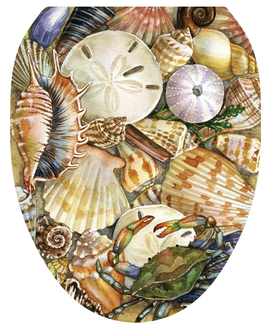 Toilet Tattoos, Toilet Seat Cover Decal, Tidal Treasures Seashells, Size Elongated by Toilet Tattoos