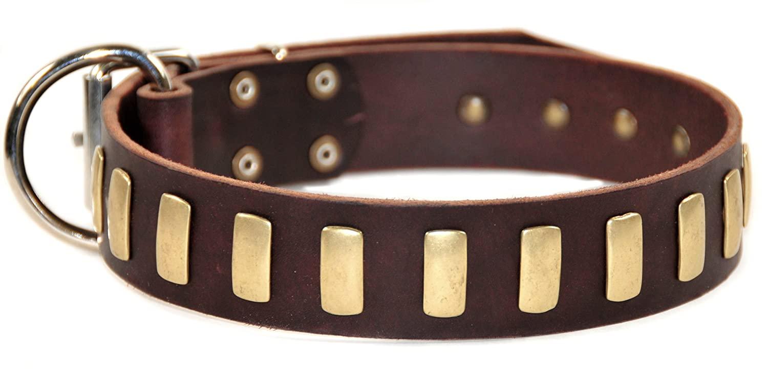 Dean and Tyler PLATED PERFECTION , Dog Collar with Nickel Buckle and Brass Plates Brown Size 32-Inch by 1-1 2-Inch Fits Neck 30-Inch to 34-Inch