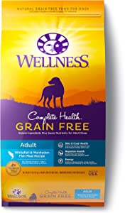 Wellness Complete Health Grain Free Dry Dog Food