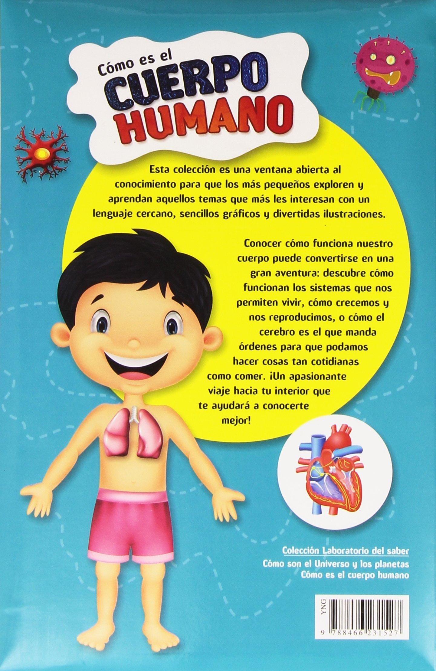 Cómo Es El Cuerpo Humano Laboratorio Del Salber Laboratorio del Saber: Amazon.es: Aa.Vv: Libros