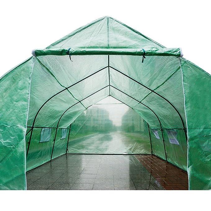 DXP Invernadero caseta Túnel para Jardín Terraza Cultivo Plantas Tomates Verduras 450 x 300 x 200 cm EHF08: Amazon.es: Jardín