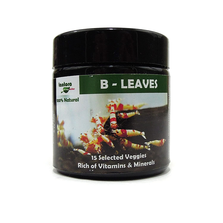 Amazon.com: tantora b-leaves Agua dulce Acuario Enano gambas ...