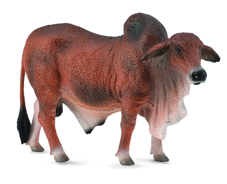 CollectA Red Brahman Bull
