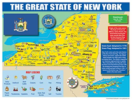 State Of New York Map.Amazon Com Gallopade Publishing Group New York State Map For