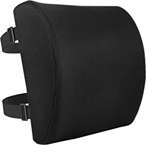 Amazon Basics Memory Foam Back Support Cushion
