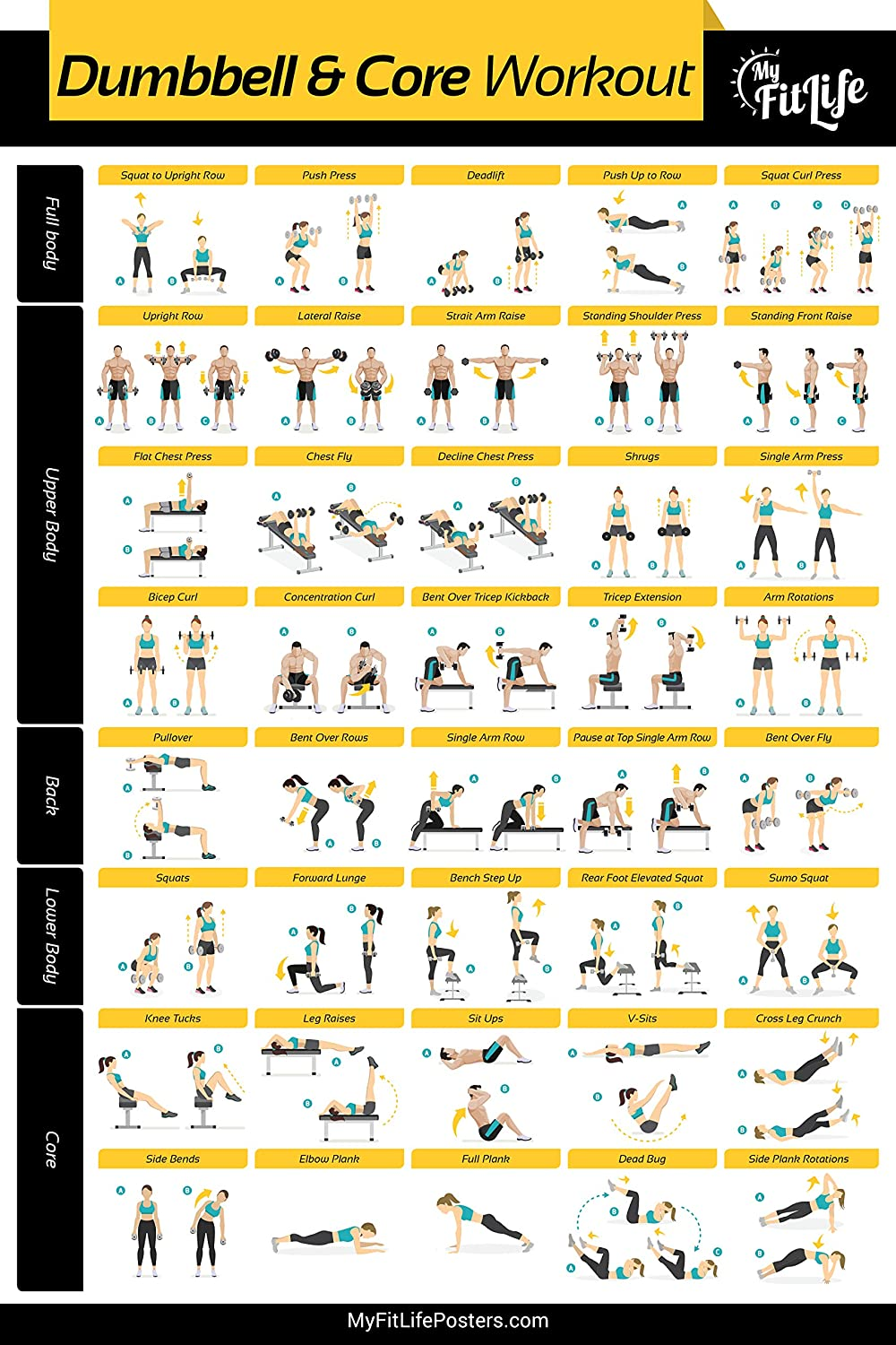 Amazon Com My Fit Life Gym Dumbbell And Core Workout Poster