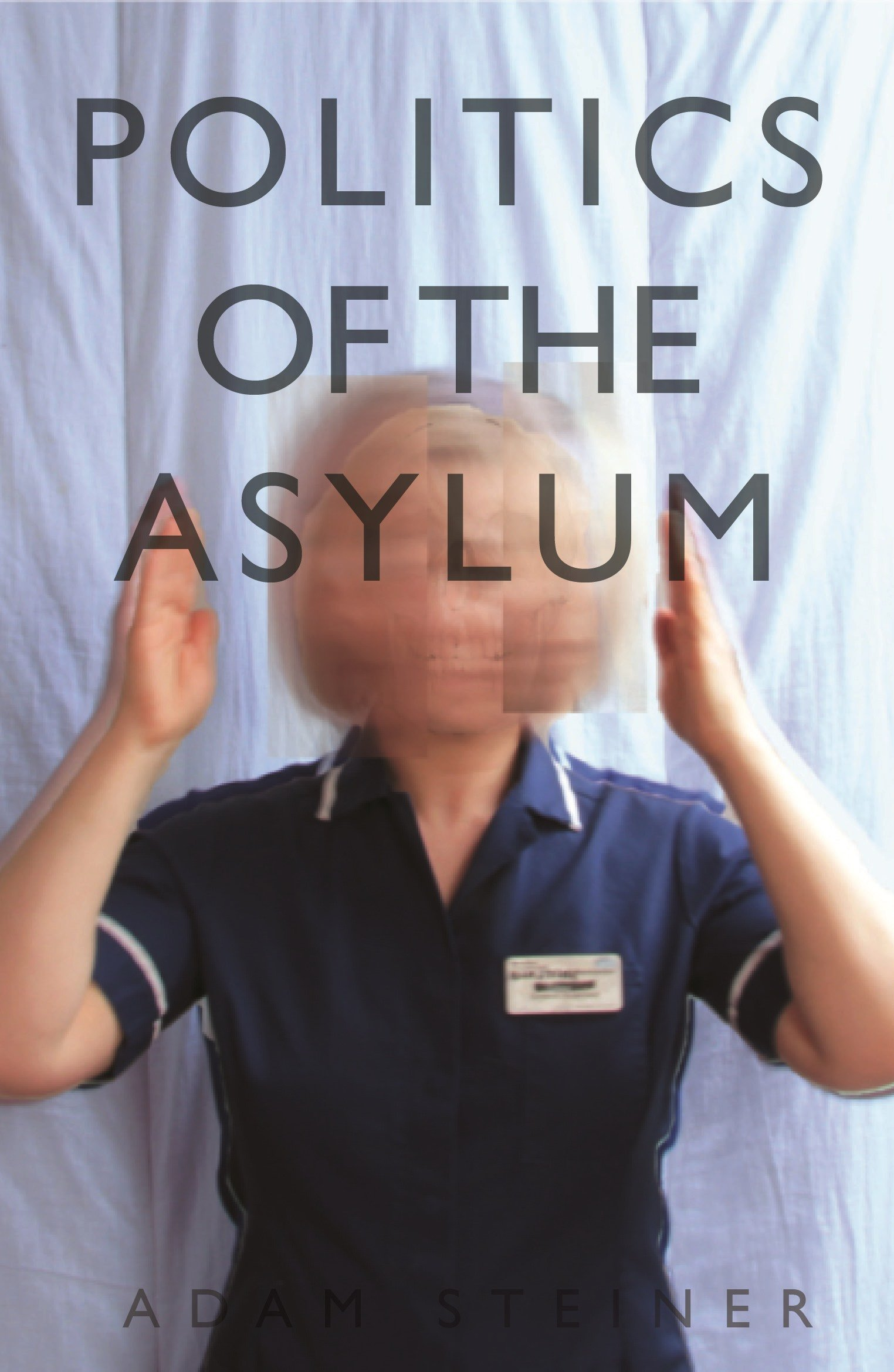 The Politics of the Asylum: Amazon co uk: Adam Steiner