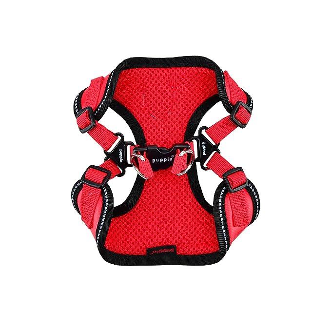 PUPPIA Arnés Legacy C, pequeño, Rojo: Amazon.es: Productos para ...