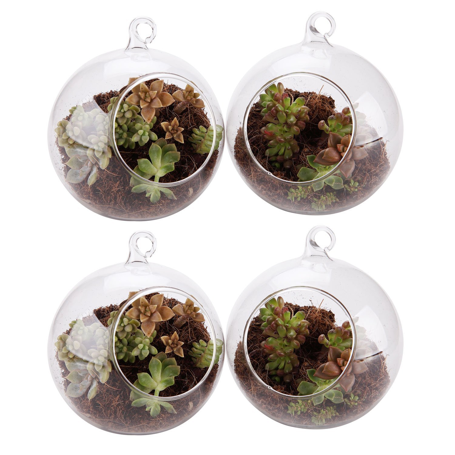 T4U 5.25'' Glass Hanging Plant Terrariums Tealight Holder - Pack of 4, Globe Air Plant Pot Container Planter for Succulent Cactus Fern, Candle Holder for Party Wedding Decor Birthday Christmas Gift