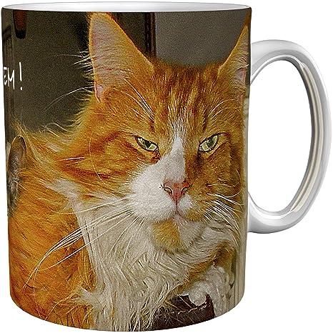 Taza de café / Taza de regalo / Gatos / Mug