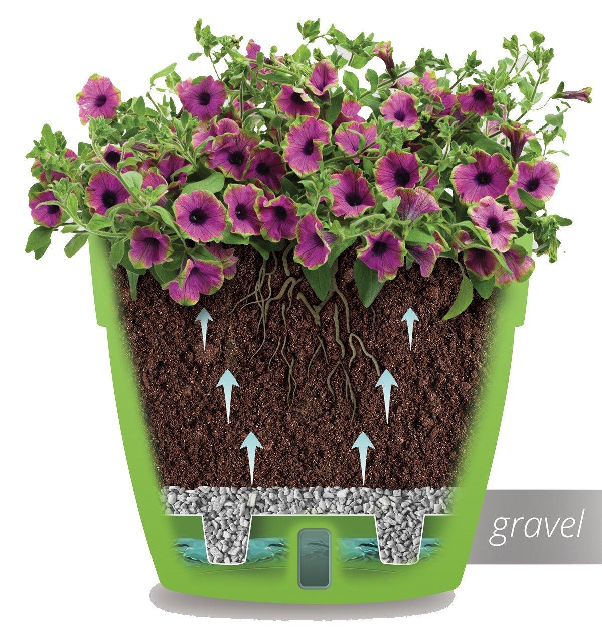 Amazon.com : Santino Self Watering Planter Asti 7.1 Inch White/Black Flower  Pot : Garden & Outdoor