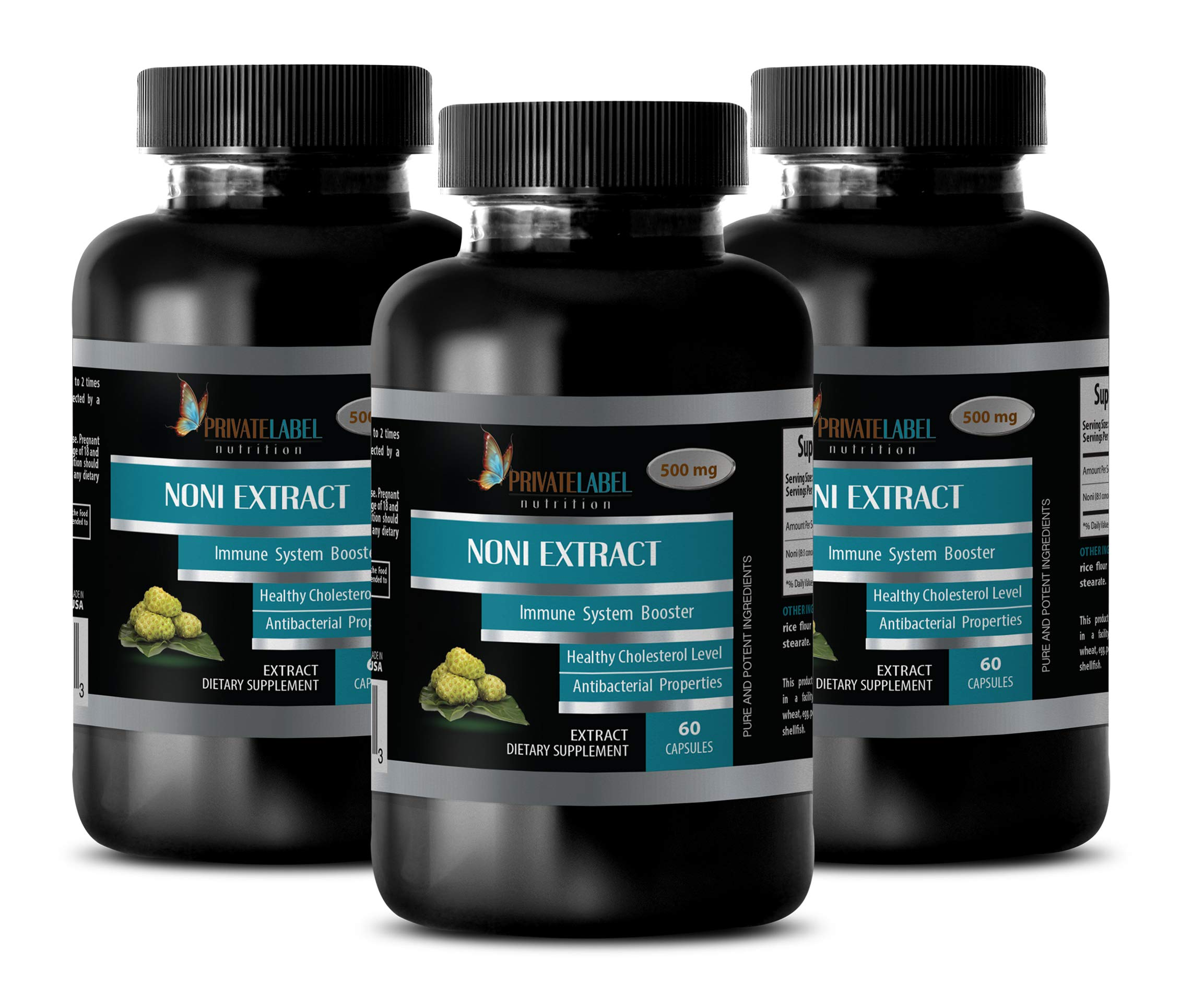 Memory and Brain Supplements - NONI Extract 500MG - Dietary Supplement - noni Amazing - 3 Bottles (180 Capsules)