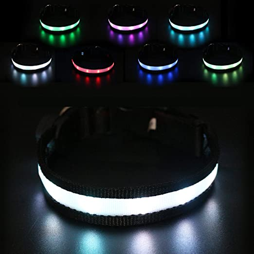 LED Dog Collar – All 7 Light Colors in One Collar + Multicolor Blink Mode! USB Rechargeable - Super Bright Night Safety - Water Resistant - 4 Sizes.