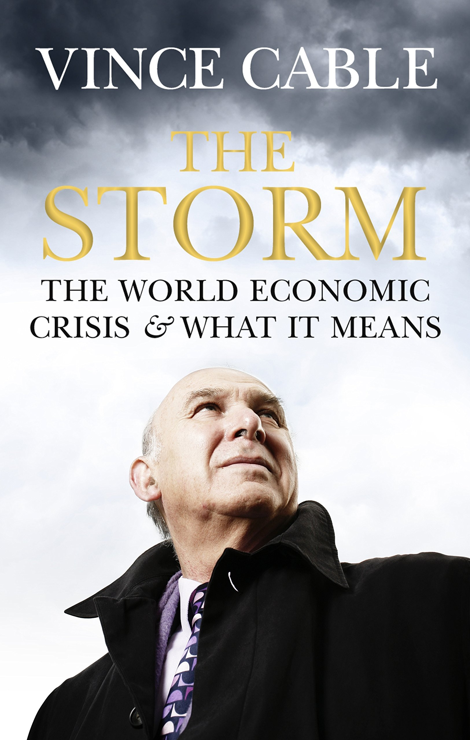 Read Online The Storm: The World Economic Crisis and What It Means pdf epub
