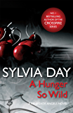 A Hunger So Wild (A Renegade Angels Novel)