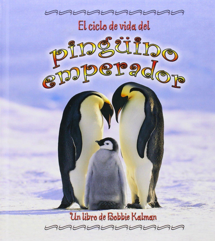 El Ciclo de Vida del Pinguino Emperador Ciclo De Vida Ciclo De Vida / The Life Cycle: Amazon.es: Johnson, Robin, Kalman, Bobbie: Libros en idiomas extranjeros