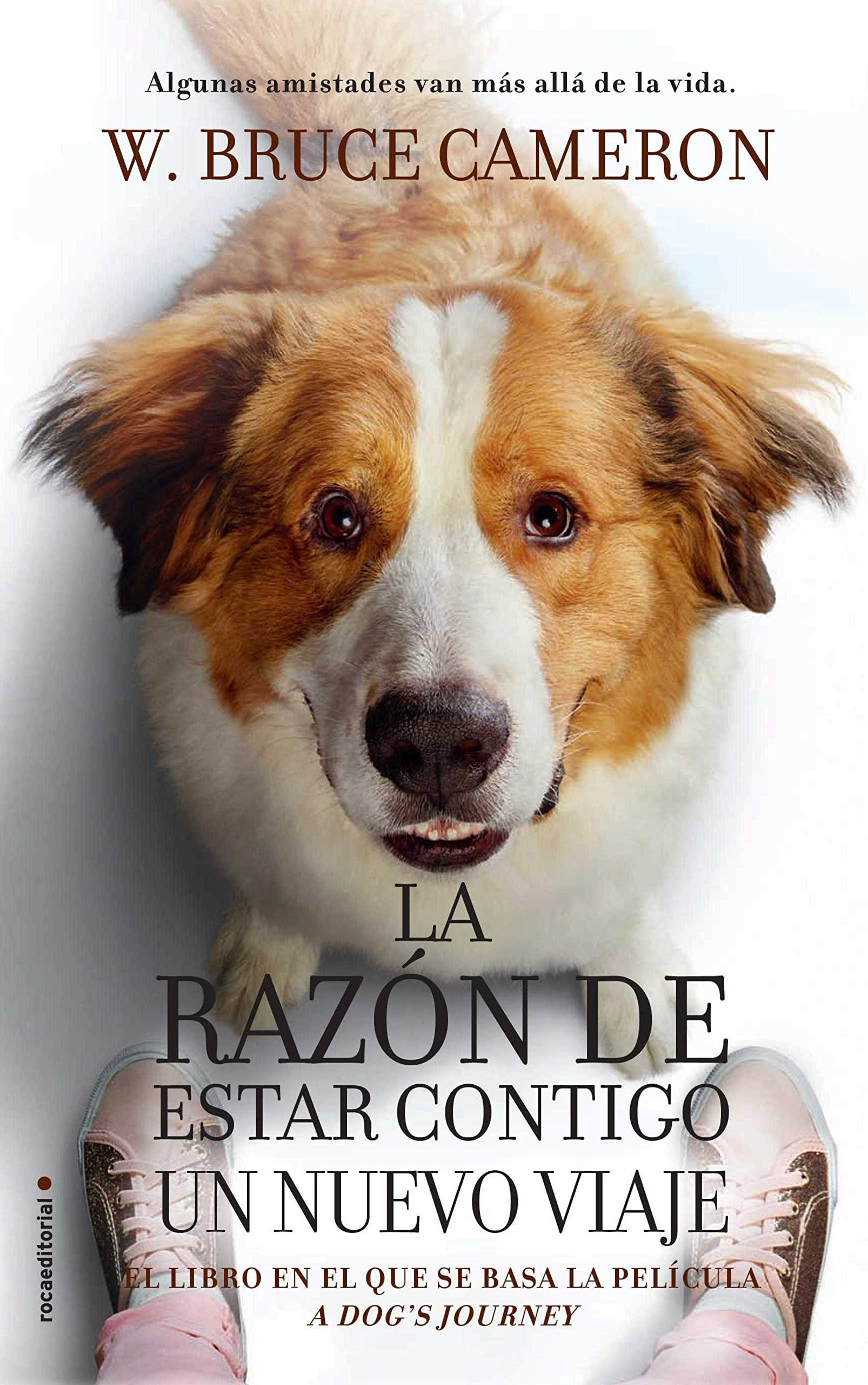 Razon de estar contigo, La. Un nuevo viaje (movie-tie-in) (Spanish  Edition): W. Bruce Cameron: 9788417805081: Amazon.com: Books