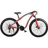 Fitness minutes Fat Bike, M2-F-Red