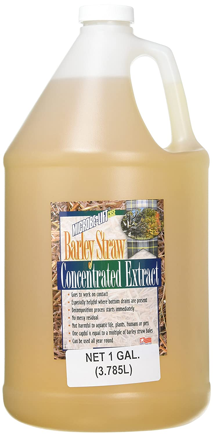 ECOLOGICAL LABS AEL20120 Microbe Lift Barley Straw Extract Pond Conditioners for Aquarium, 1-Gallon
