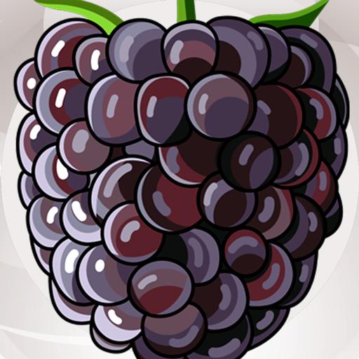 Frame Bush (Blackberries Photo Collage)