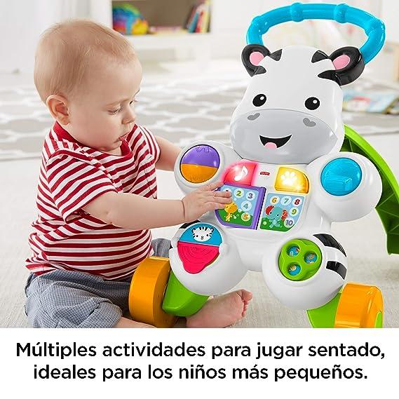 Fisher-Price Mattel DLD84 - Cebra Parlanchina Primeros Pasos, Correpasillos Bebé +6 Meses