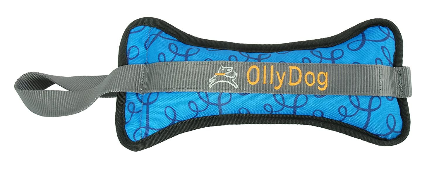 85%OFF OllyDog The Olly Bone II Bumper Toy with Blue Loops, Large