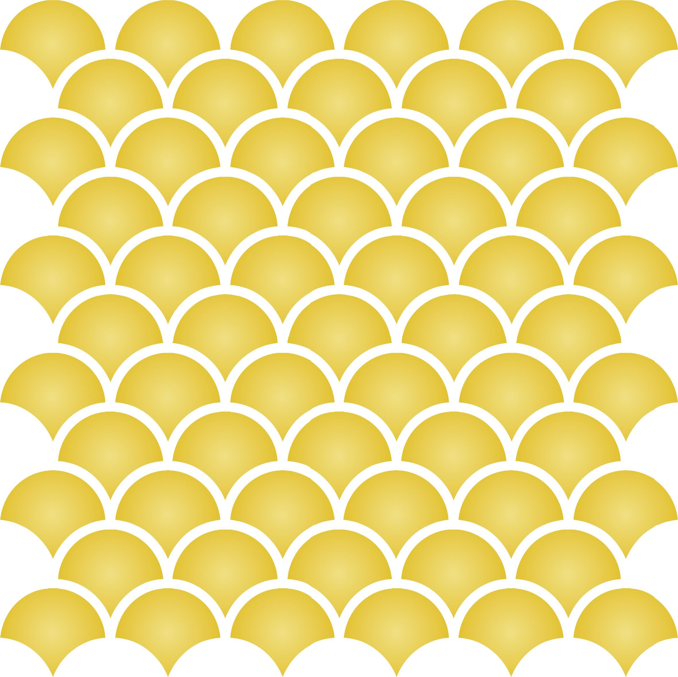 2'' Fish Scale Trellis Stencil - 14 x 14 inch (L) - Reusable Template Allover Wallpaper Wall Stencils for Painting - Use on Walls, Floors, Fabrics, Glass, Wood, and More...