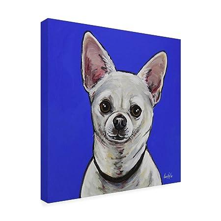 Amazon com: Trademark Fine Art Chihuahua Pepe by Hippie