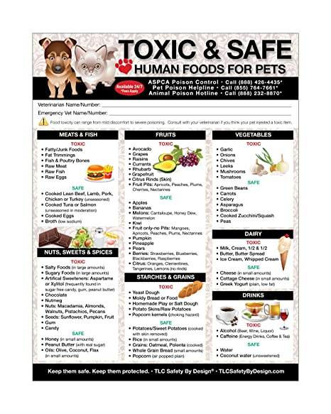 Amazon Premium Toxic And Safe Foods Poison For Pets Dogs Cats