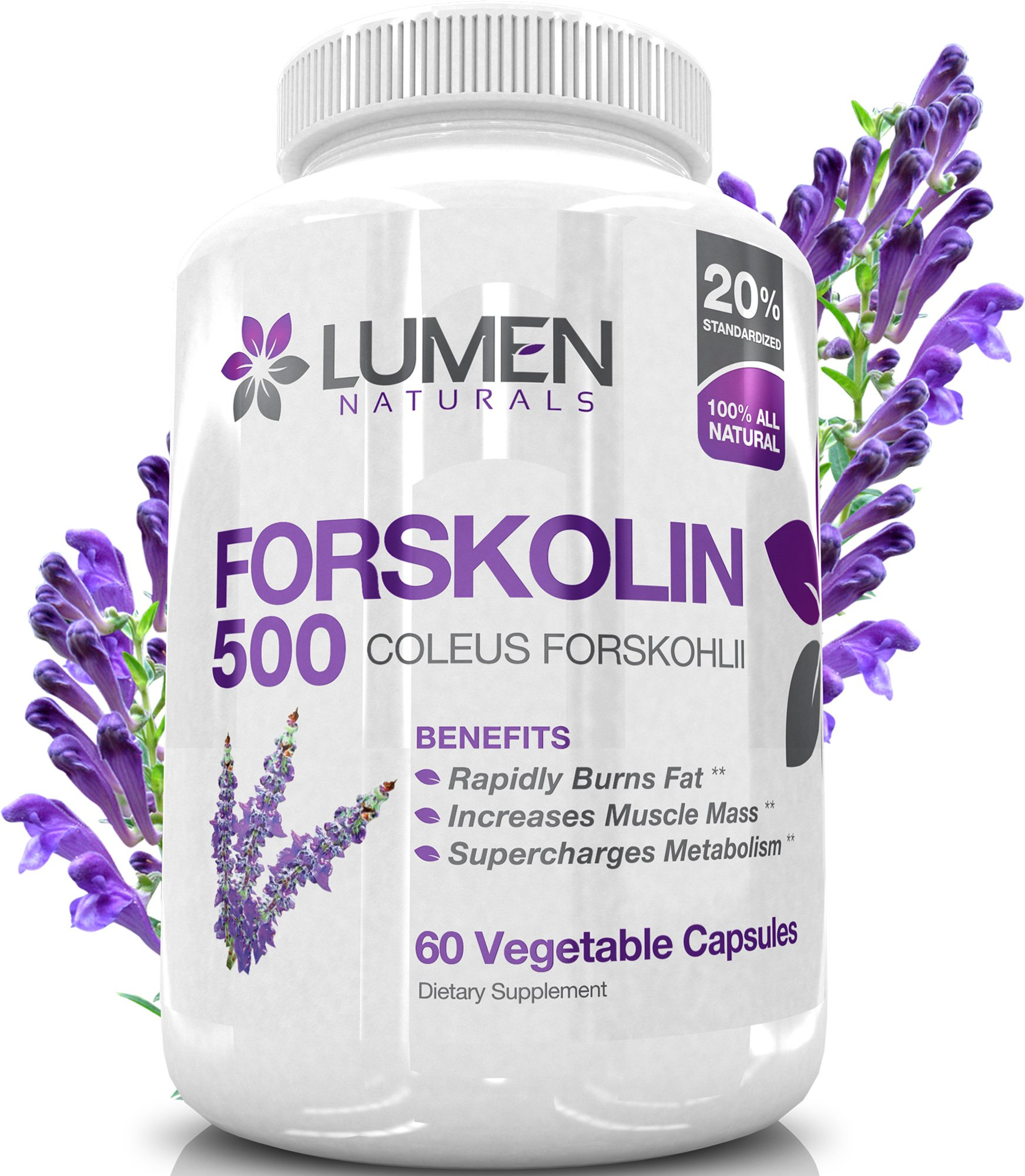 Pure Forskolin Extract 500mg - 2X Strength 20% Standardized Fat Burner - Natural Coleus Forskohlii Appetite Suppressant Verified by Research - 60 Capsules
