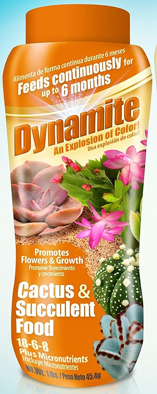 Dynamite 82170 Sun Bulb Cactus & Succulent Food, White