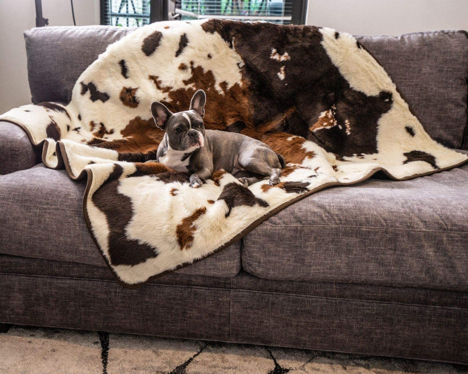 Machine Washable or Car from Spills PupProtector Waterproof Dog Blanket Couch Scratching Soft Plush Throw Protects Bed Stains or Pet Fur Multiple Colors